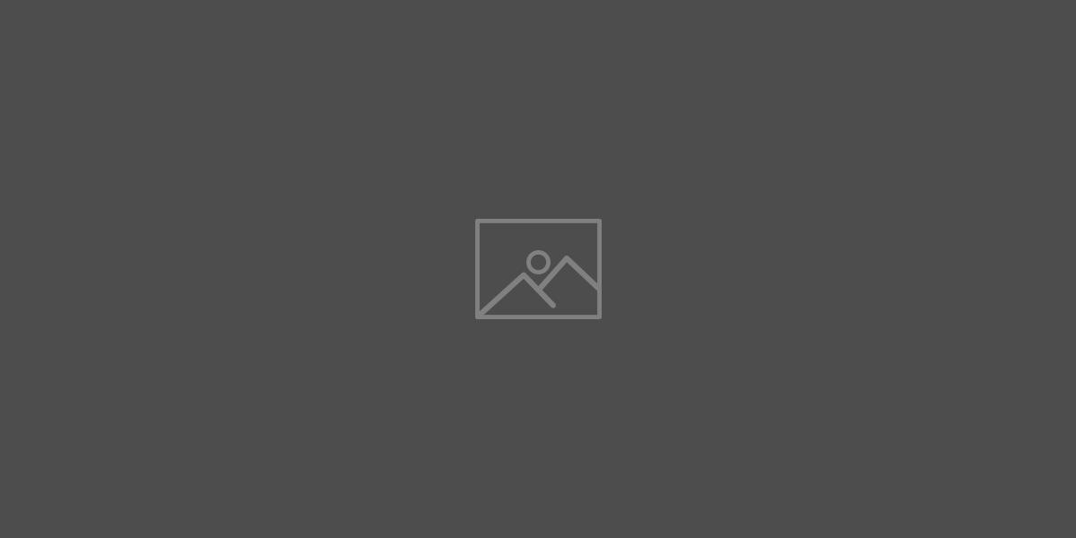 логотип supercat casino